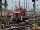 SH106515.JPG