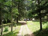 Camp 175.jpg