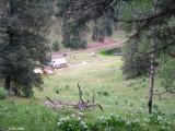 Camp 296.jpg