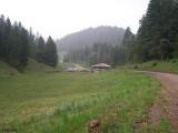 Camp 305.jpg