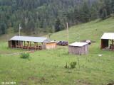 Camp 398.jpg