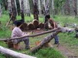 Camp 477.jpg