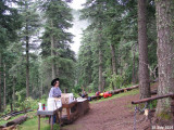 Camp 545.jpg