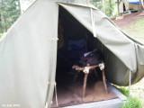 Camp 588.jpg