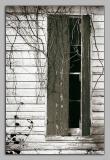05.30.06 Forgotten Schoolhouse