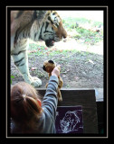 Bronx Zoo Oct. '10