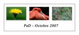 Pad October 2007