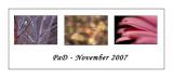 Pad November 2007