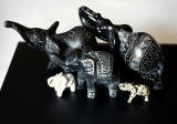 My Almost Black and White Elephants