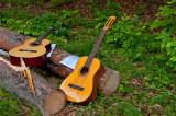 Two Guitars, Two Lyrics, Two Trunks