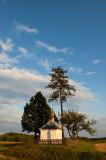 St. Nepomuk Shrine And Trees