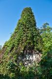Cemetery Obelisk