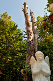 White Beech And Angel