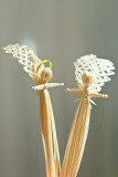Straw Angels