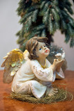 Angel With A Dove