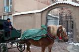 Magic Cab, Magic Cabman, Magic Horse ... And Magic Gate