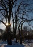 Cold Winter, Warm Light