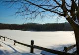 Snowed Fence
