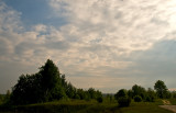 Volyn Upland Landscape