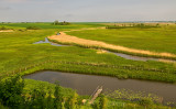 Landscape In Zymne