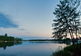 TUCHOLA FOREST  (BORY TUCHOLSKIE), POLAND