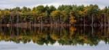 Willand Pond