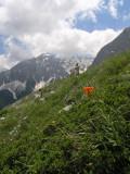 am Weg zurück ins Valbona Tal