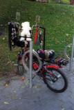 Bicycle Reala