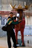 Stephen and the Moose.