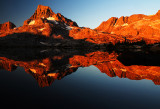 Morning's Orange Glow