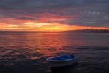 Magdalena - Baja California-Bay- Mexico