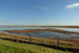 De Putten Birdreserve  Holland.