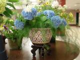 960-DSC02836 flowers (100622033).jpg