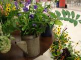 960-DSC02842 flowers (100622036).jpg