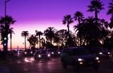 twilight palm, santa monica
