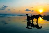 Sunset by the Parangtritis beach