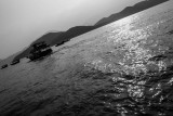 fishing boat fleet