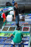 seafood hawkers