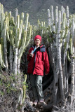 Ruth in a cactus