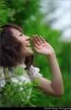 Green Summer_Peko