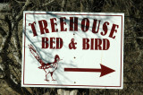 Treehouse Bed and Bird, Uvalde County