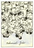 Advanced Judo-small
