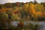Fall: 2010