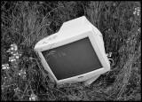 monitor_in_grass_1182.jpg
