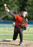 Little League Baseball 2006