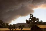 Fire Season 2009
