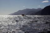 Off Breaksea, Fiordland