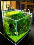 My Aqua Cube