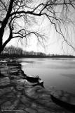 Lake of Summer Palace