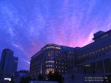 Daimaru Sunset